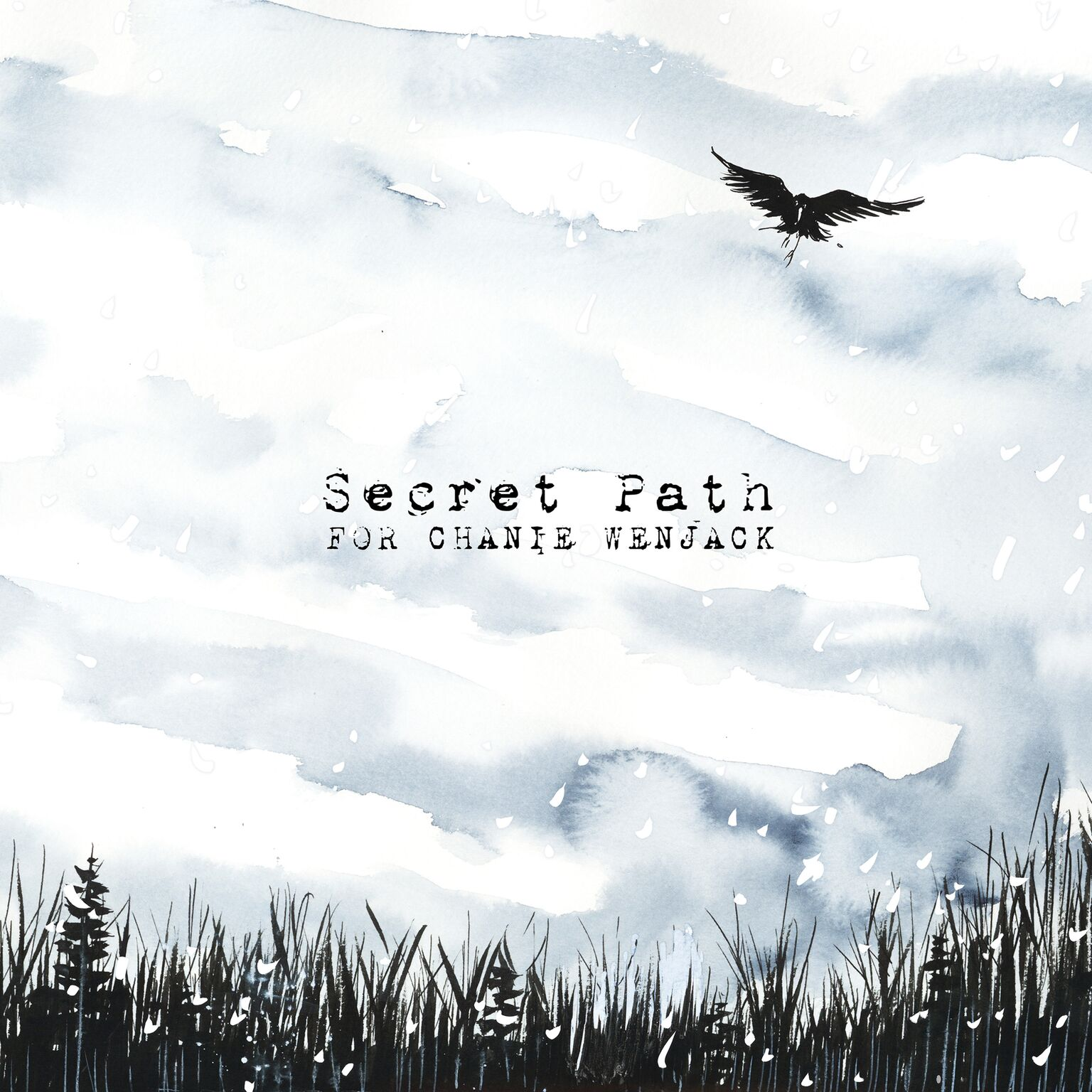 Secret Path Gord Downie And Jeff Lemire